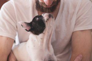 Hondenfluisteraar