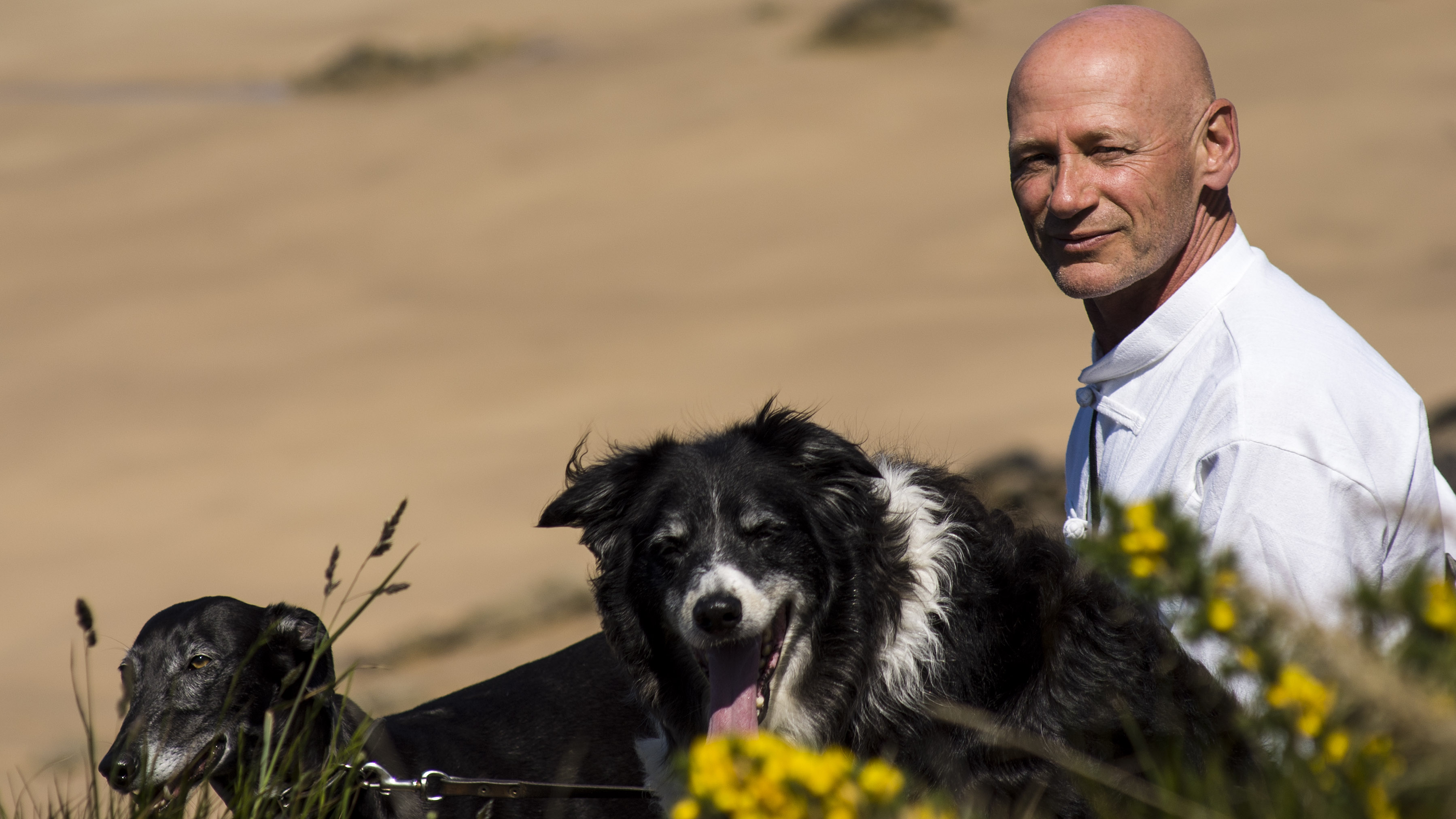 Hondencoach Tonnie Middelburg